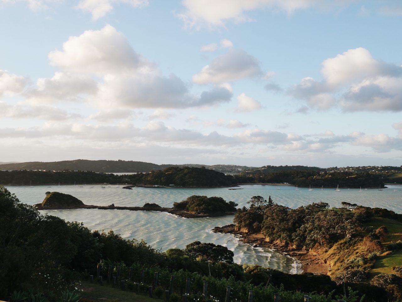 Waiheke Island – Vineyards & Beaches